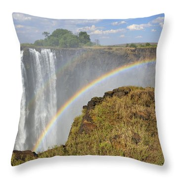 Victoria Falls Throw Pillow by Tony Beck
