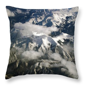 View From Above Throw Pillow by Patricia Griffin Brett