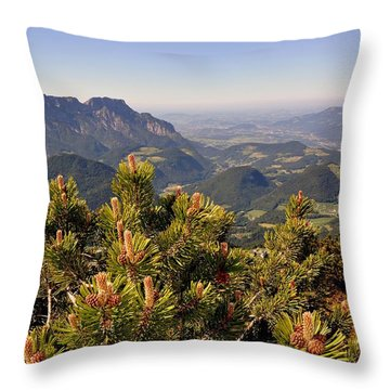 View From Eagles Nest Throw Pillow by Rick Frost