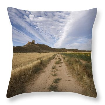 View Of A Castle Throw Pillow by Paul Maeyaert