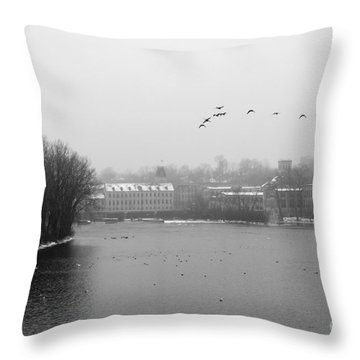 View Of The Mills Throw Pillow by Joel Witmeyer