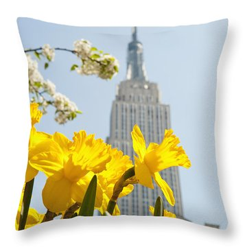 Views Of The Empire State Building And Throw Pillow by Axiom Photographic