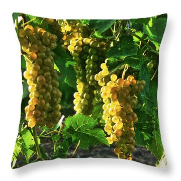 Throw Pillow featuring the photograph Vignole Berries by William Fields