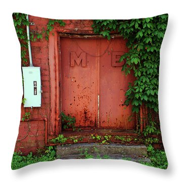 Throw Pillow featuring the photograph Vines Block The Door by Paul Mashburn