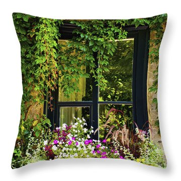 Vines Growing On A Wall And Flowers Throw Pillow by David Chapman