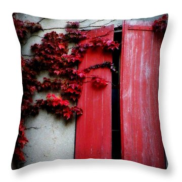 Vines On Red Shutters Throw Pillow