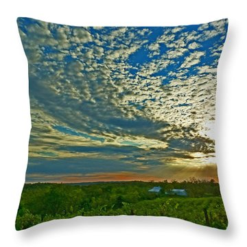 Throw Pillow featuring the photograph Vineyard Sunset I by William Fields