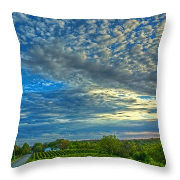 Throw Pillow featuring the photograph Vineyard Sunset II by William Fields