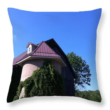 Throw Pillow featuring the photograph Vineyard by Tiffany Erdman