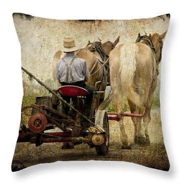 Vintage Amish Life D0064 Throw Pillow by Wes and Dotty Weber