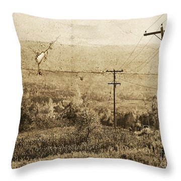Vintage View Of Ontario Fields Throw Pillow