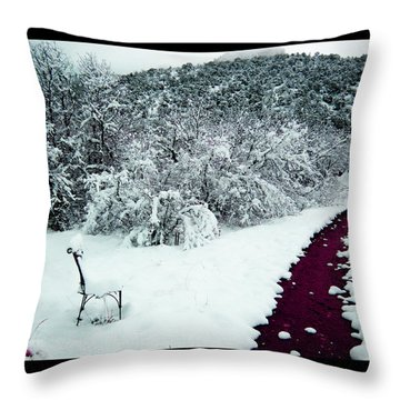 Throw Pillow featuring the photograph Violet Passage by Susanne Still