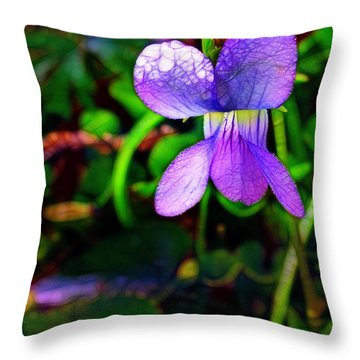 Violet With Dew Throw Pillow by Judi Bagwell