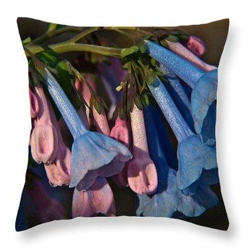 Virginia Bluebells 11 Throw Pillow by Douglas Barnett