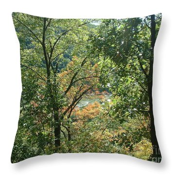 Throw Pillow featuring the photograph Virginia Walk In The Woods by Mark Robbins