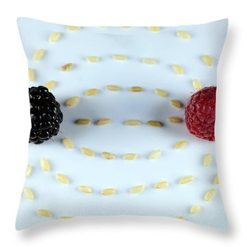 Vitalberry And Raspberry Depicting Magnetic Field Line Throw Pillow by Paul Ge