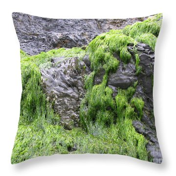 Throw Pillow featuring the photograph Vitality by Tina Marie