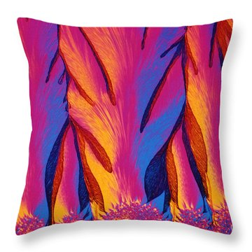 Vitamin E Crystals Throw Pillow by Michael W Davidson