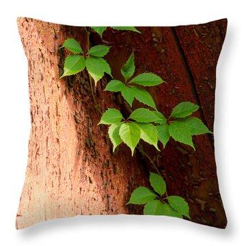 Vitis Throw Pillow