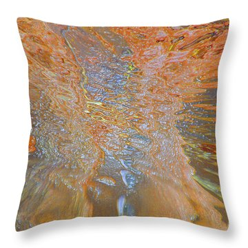 Vortex Throw Pillow by Cindy Lee Longhini