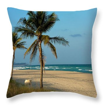 Throw Pillow featuring the photograph Voyage by Joseph Yarbrough