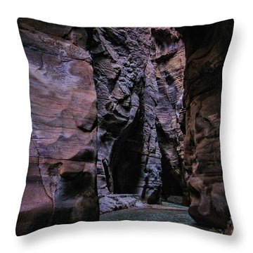 Wadi Mujib Jordan Throw Pillow by David Gleeson
