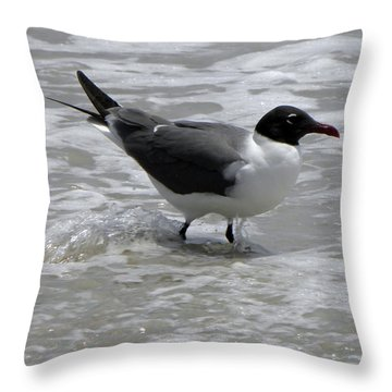 Wading Throw Pillow by Sandi OReilly