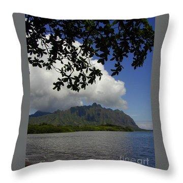 Waiahole Beach Park Throw Pillow by Mark Gilman