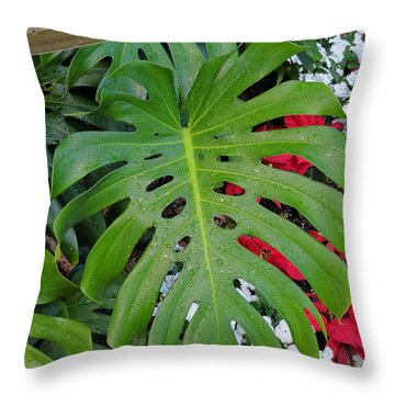 Waikiki Split Leaf Throw Pillow