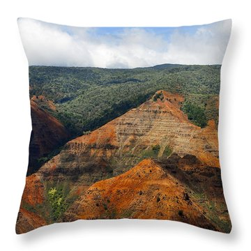 Waimea Canyons Throw Pillow by Debbie Karnes