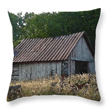 Waiting For The Harvest Throw Pillow by Jerry Hellinga