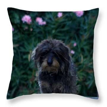 Waiting Throw Pillow by Lainie Wrightson