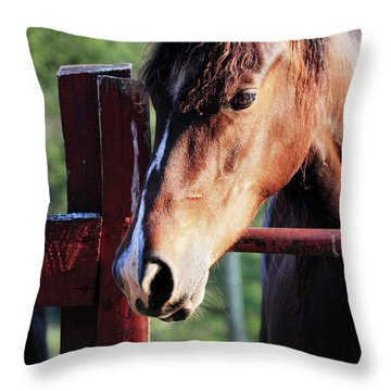 Waiting Throw Pillow by Stephanie Frey