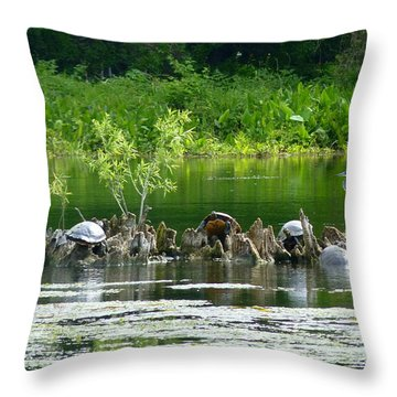 Wakulla Springs Wildlife Throw Pillow