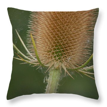 Throw Pillow featuring the photograph Wales by Tam Ryan