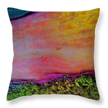 Throw Pillow featuring the digital art Walk Into The Future by Richard Laeton