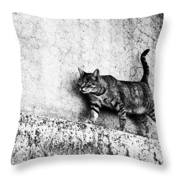 Throw Pillow featuring the photograph Walking On The Wall by Laura Melis