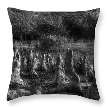 Walrus Beach Throw Pillow by Debra and Dave Vanderlaan