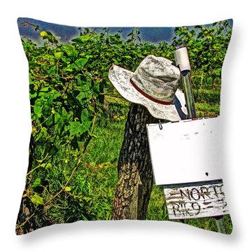 Throw Pillow featuring the photograph Walt's Hat by William Fields