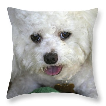 Wanna Play Ball? Throw Pillow