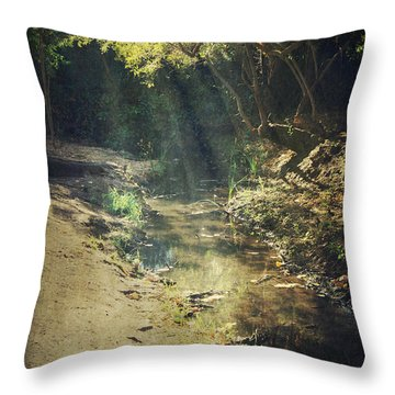 Warm My Soul Throw Pillow by Laurie Search