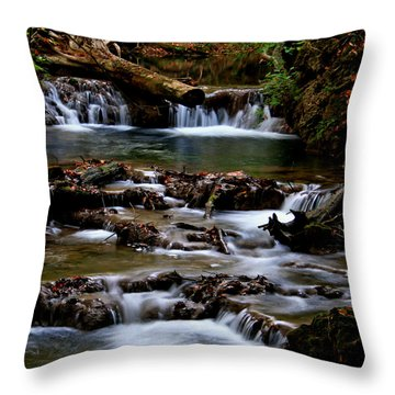 Warm Springs Throw Pillow