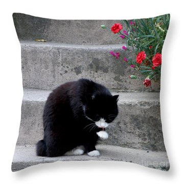 Washing Up Throw Pillow by Lainie Wrightson
