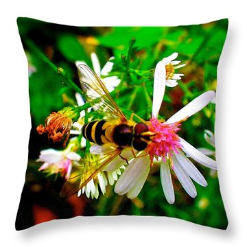 Wasp On Flower Throw Pillow