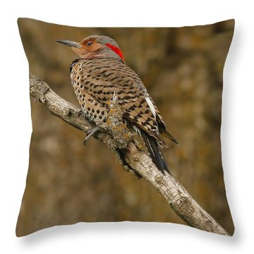 Throw Pillow featuring the photograph Watchful Eye by Elizabeth Winter