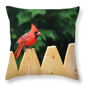 Watchful Father Throw Pillow