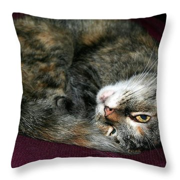 Throw Pillow featuring the photograph Watching On The Sly by Laurel Talabere