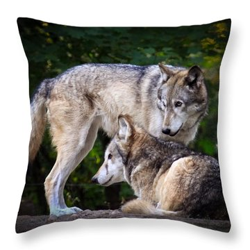 Throw Pillow featuring the photograph Watching Over by Steve McKinzie