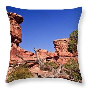 Watching Throw Pillow by Robert Bales