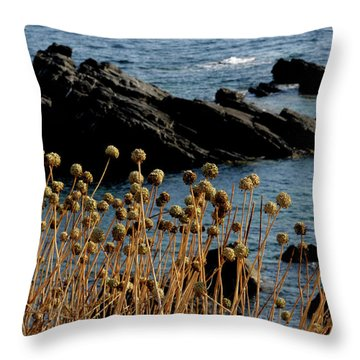Throw Pillow featuring the photograph Watching The Sea 1 by Pedro Cardona